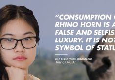 Vietnamese teens launch anti-rhino poaching initiatives after a trip to SA