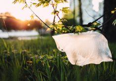 Global recognition for SPAR's plastic initiative