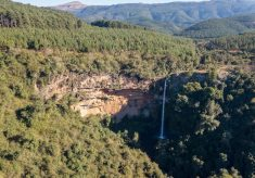 Plan your 2019 bucket list with Forestry South Africa's new online recreational map