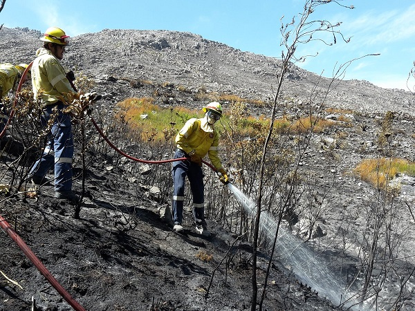 Western Cape Fires