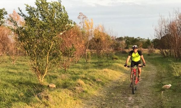 New MTB trail opens for Bay enthusiasts