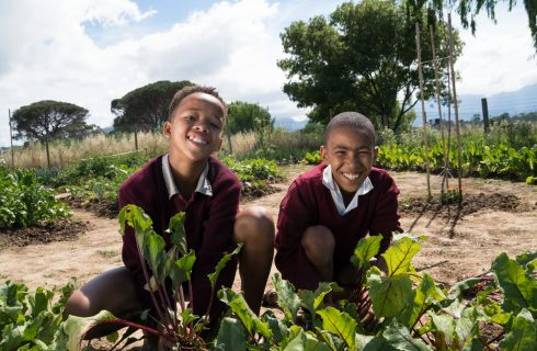 ONE SMALL SEED: A FORGOTTEN FIELD IS NOW A FLOURISHING FOOD GARDEN