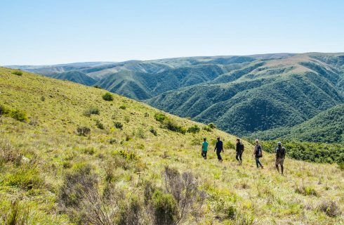 Free entry to Addo Elephant National Park