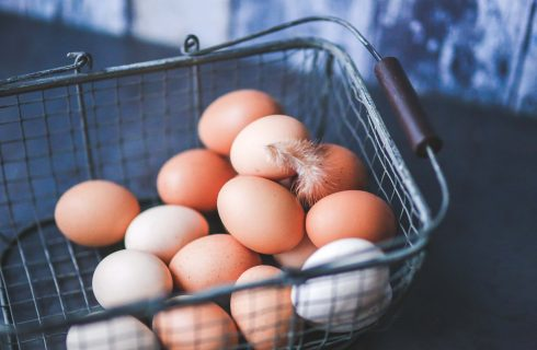 SAFCEI'S CAGE-FREE CAMPAIGN – A BIG STEP CLOSER TO ETHICAL EGG FARMING