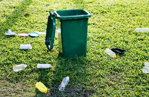 Campaign to clean up the environment gains momentum