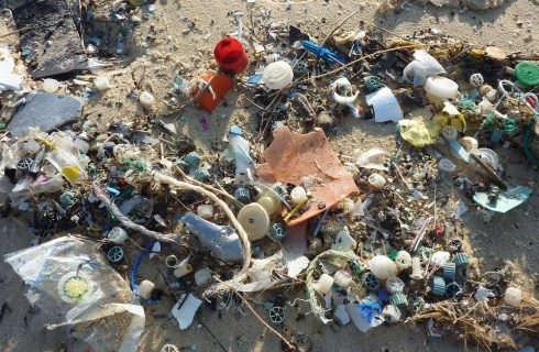 Everything you need to know about plastic pollution and how to cut back