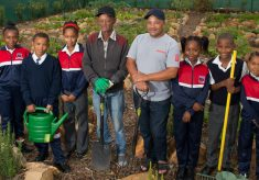 Flourishing garden a metaphor for the upliftment of Wesbank youth