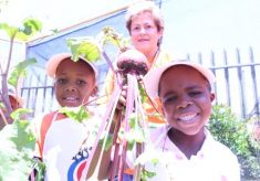 From the Garden to the Classroom